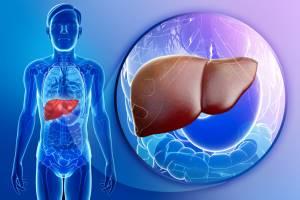 Перспективы лечения и профилактики неалкогольного стеатогепатита