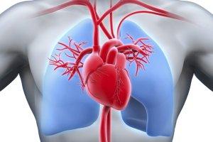 что такое васкулит и как его лечить, ответы врачей, консультация