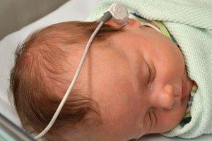 Первый скрининг при беременности на каком сроке делают