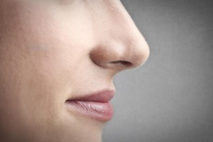 Слизистые оболочки – важный участок защитного барьера организма