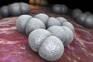 Дезинтоксикационная терапия инфекционных заболеваний