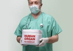 Богомолець: Мій законопроект про трансплантацію, який дає надію тисячам українців, можуть не затвердити - Цензор.НЕТ 1601