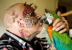Британец радикально изменил свою внешность ради сходства с любимыми попугаями…