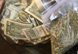 Доходы от легализации марихуаны пустят на нужды здравоохранения