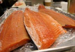 В США разрешено выращивание ГМ-лососей