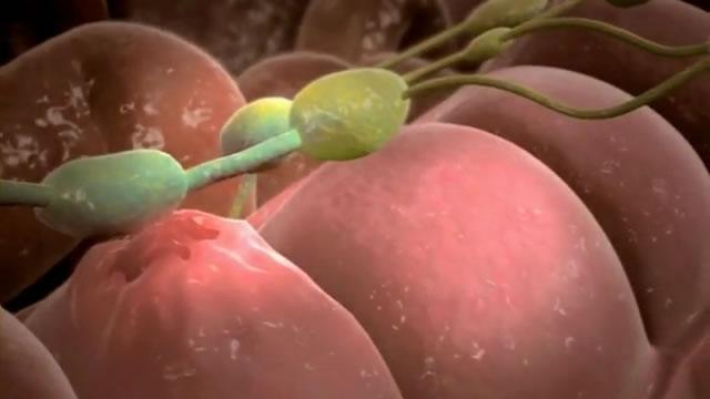 подростковая гинекология фото